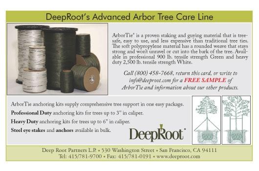 Deep_Root0709119-06-14-12-28-22